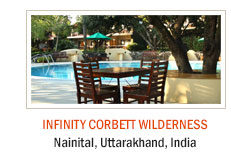 Infinity Corbett Wilderness