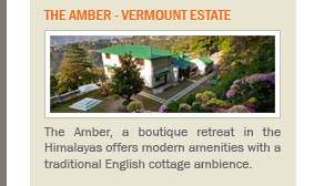 The Amber - Vermount Estate