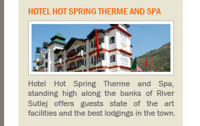 Hotel Hot Spring Therme and Spa