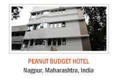 Peanut Budget Hotel