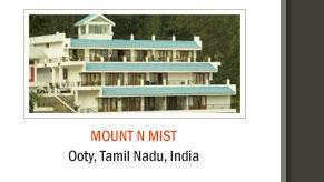 Mount n Mist