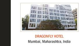 Dragonfly Hotel