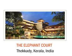 The Elephant Court