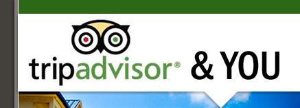 TripAdvisor and You