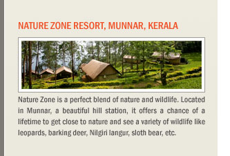 Nature Zone Resort, Munnar, Kerala