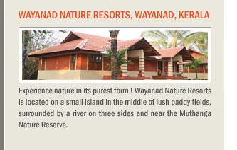 Wayanad Nature Resorts, Wayanad, Kerala